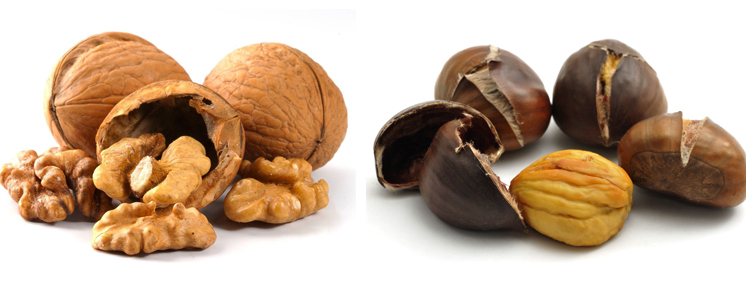 Грецкие орехи и каштан