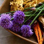 Лекарственные травы для лечения простатита и аденомы: обзор самых эффективных